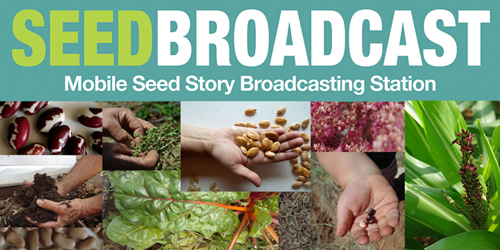 Sol – 1_SeedBroadcast